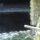 Трагедия в Полоцком районе: в пруду утонула шестилетняя девочка