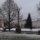 На центральной площади Полоцка установили новогоднюю ёлку