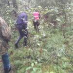 В Полоцком районе заблудились четыре грибника