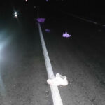 В Полоцком районе микроавтобус насмерть сбил пешехода — тот был пьян и без фликера